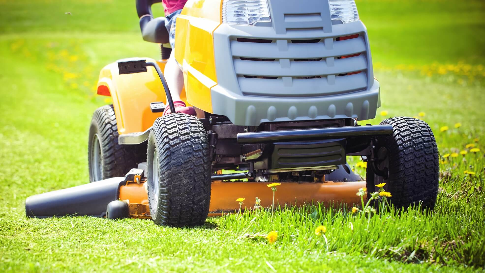 Image result for Over mowing can be harmful